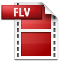 FLV動画フォーマット
