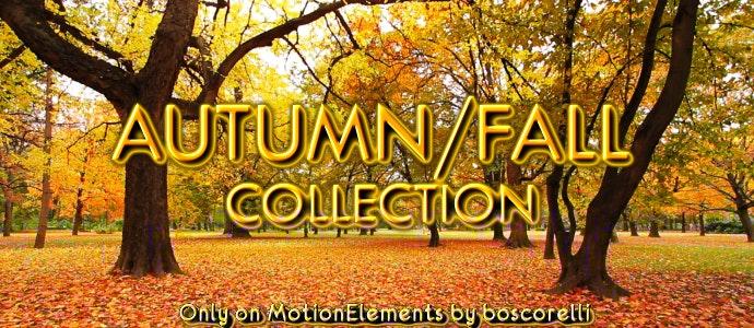 ME Autumn 1