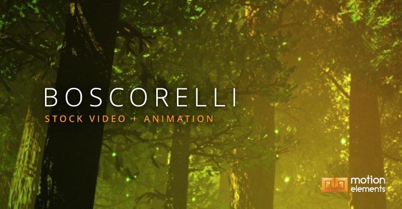 クリエイター・インタビュー:BOSCORELLI